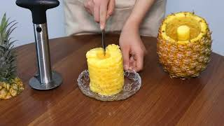 Newness Pineapple Corer