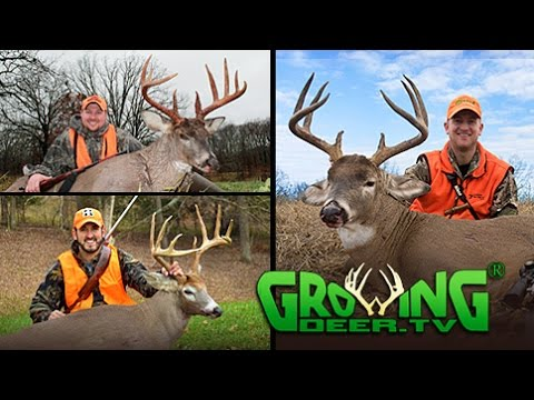 Exciting Deer Hunting During the Rut: 4 Big Bucks Down! (#314) @GrowingDeer.tv