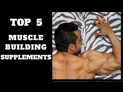 Top 5 Supplements for Muscle Growth