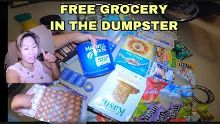 DUMPSTER DIVING FREE GROCERIES IN THE TRASH AND A LOT MORE