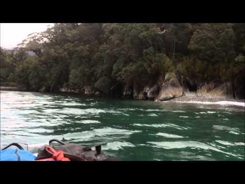 Poison Bay Trip
