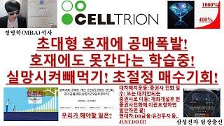 [주식투자]셀트리온(초…