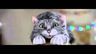 Игры животные. Кошмарное утро кота