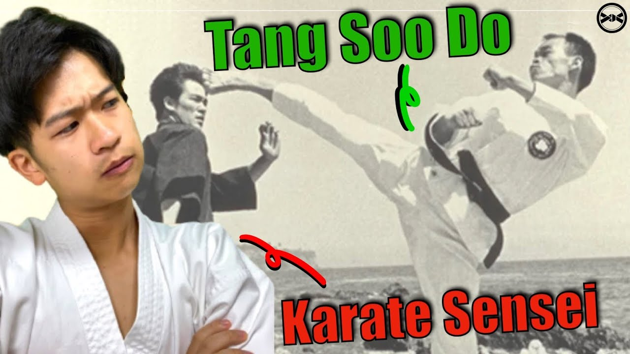 Japanese Karate Sensei Reacts To Tang Soo Do For The FIRST Time!