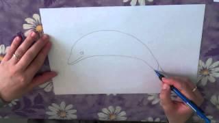 Как нарисовать дельфина поэтапно.(В этом видео я расскажу, как рисовать дельфина поэтапно. Рисуйте с нами в нашей группе http://vk.com/shkola_izo. Форум..., 2013-05-11T08:05:55.000Z)