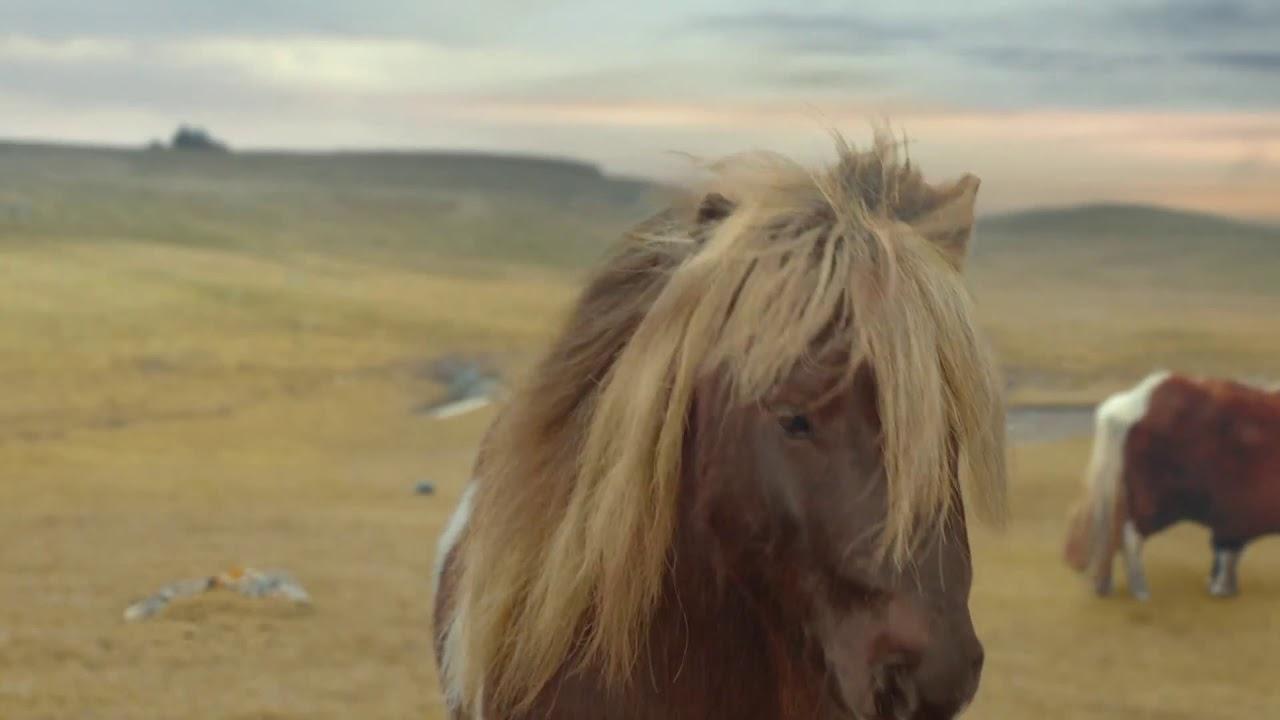 Three Pony Advert Fleetwood Mac Everywhere 2013 Youtube