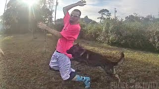 Bodycam Shows Officer Deploy K9 Shep On Fleeing Suspect