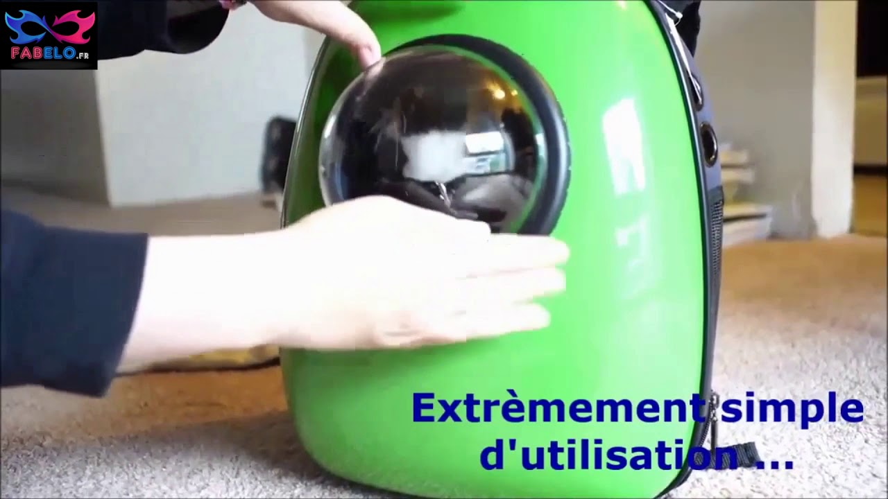 Capsule Sac A Dos De Transport Pour Chat Youtube