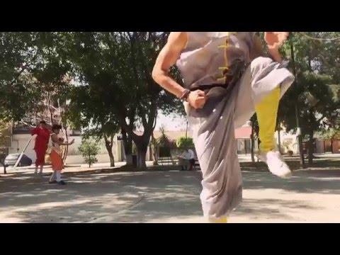 Shaolin cultural center Mexico