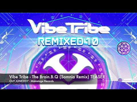 Vibe Tribe - The Brain.B.Q (Somnia Remix) TEASER [OUT JUNE2017]