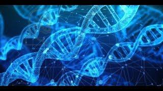 14-RO Lili, Cele 12 spirale ADN si bazele reptiliene din Romania - Hipnoza Regresiva Ana Oprea