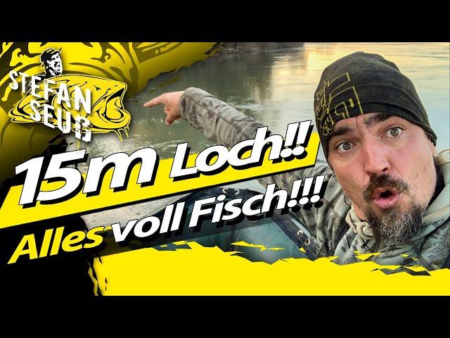 Tiefes LOCH - Große FISCHE?! | WILDSCHWEIN am ANGELPLATZ! | U-Pose Umlenken beim Welsangeln im Fluss