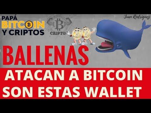 Ballenas BITCOIN Atacando, Wallet y Pruebas