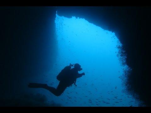 Une plongée à l' île Plane, Oran