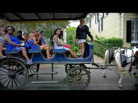 Carriage Tour of Historic Charleston - Video