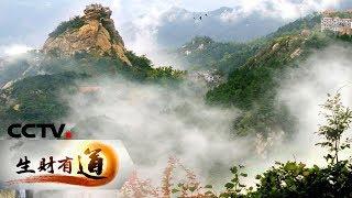 《生财有道》 20190520 文旅经济看中国 书记说文旅——信阳鸡公山 文旅结合显活力| CCTV财经