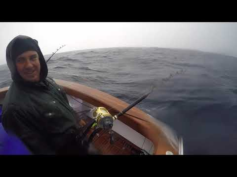 Waihau Bay & White Island Bluefin Tuna 2020