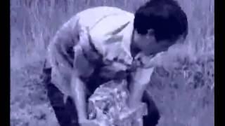 Chuyện ngày thơ- Hồng Xương Long.( Dương Ngọc Thái)