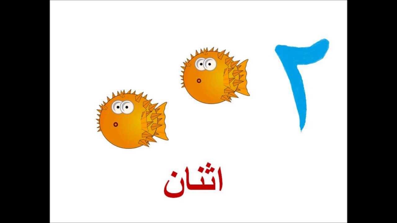 ... العربية - Arabic Numbers Song For Children - YouTube