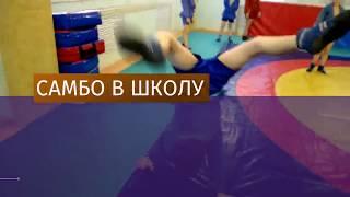 Уроки самбо появятся в российских школах