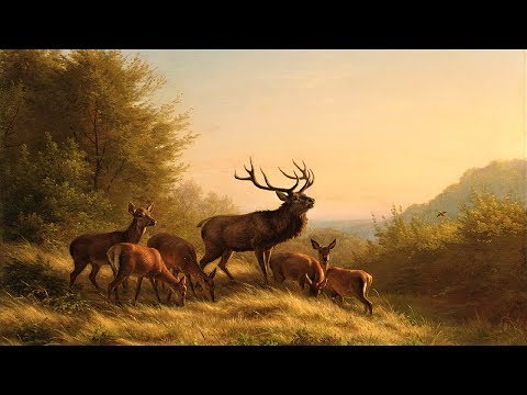 Pachelbel's Canon in D + Relaxing Nature Sounds ~ 3 Hours
