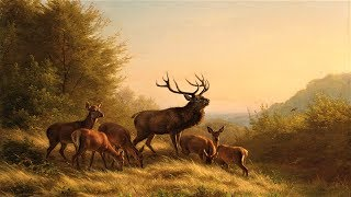 Pachelbel's Canon in D + Relaxing Nature Sounds ~ 3 Hours - Stafaband