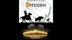 Altın Kapının Anahtarı Bitcoin - Selcoin Kitap Değerlendirmesi