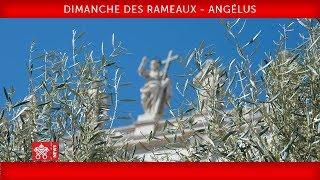 Pape François - Célébration du Dimanche des Rameaux - Prière de l'Angélus 2019-04-14