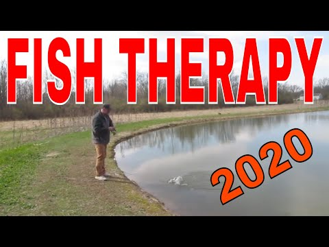FISH THERAPY
