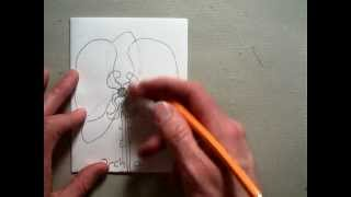 Drawing a basic Orchid flower (Part 9/9).MOV