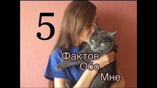 5 фактов обо мне