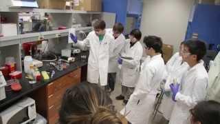 Caltech Academics