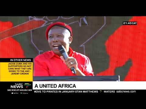 Julius Malema intensifies call for the collapsing of borders in Africa