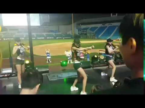 삼성라이온즈 Samsung Lions Cheerleading 금토는블루다 / 2017.6.17