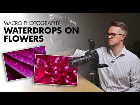 Macro Photography - Waterdrops on Flowers