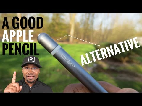 Pendorra Stylus Pen Review - Good Apple Pencil Alternative