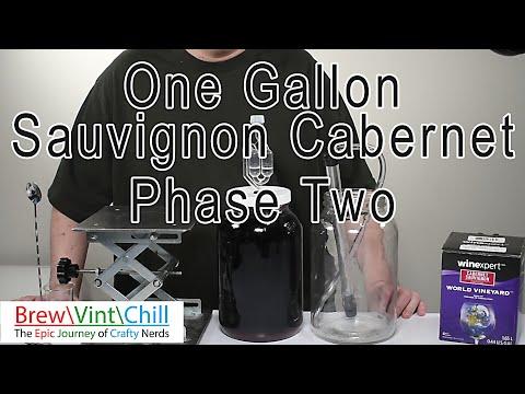 Cabernet Sauvignon WinExpert One Gallon Phase 2: Clarification And Degassing