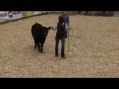 NILE: Montana Angus Futurity & Association Sale Viewing Party