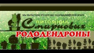 видео Интернет магазин растений Киев, купить декоративные растения. -
