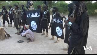 vuclip Boko Haram 3