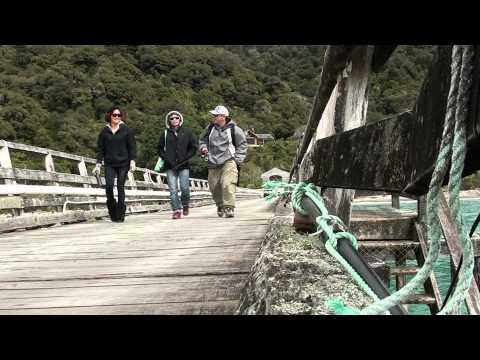 Katie Tsuyuki's Video Blog 37: Fishing In Jackson Bay