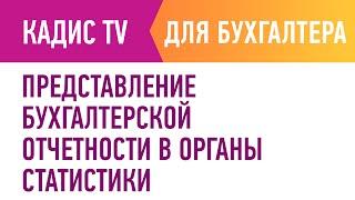 Представление бухгалтерской отчетности в органы статистики.(, 2016-02-26T09:43:06.000Z)