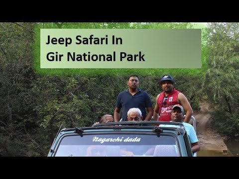Jeep Safari in Gir National Park