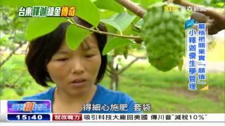 福建姑娘台東種釋迦 翻轉命運變富農《海峽拼經濟》