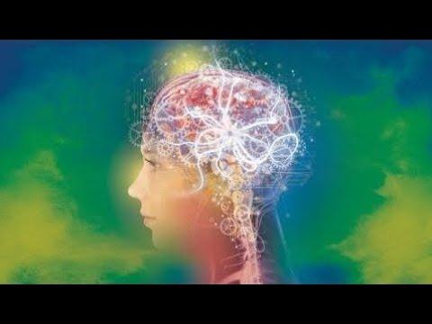History Documentary The Secret Of Human Brain Ever