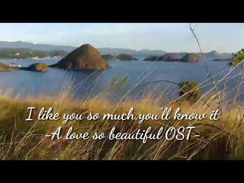lirik-lagu-l-like-you-so-much,-you'll-know-it-(-a-love-so-beautiful-)