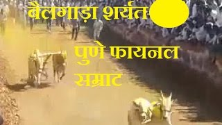 Repeat youtube video Bailgada Sharyat Final Samrat Pune