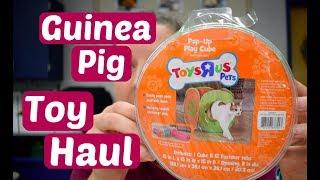 Іграшка возити по 6 морських свинок   січня 2018 року