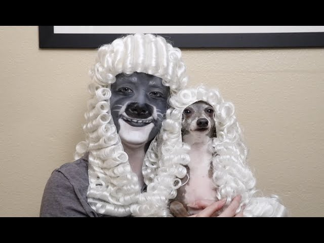 transforming-myself-into-my-dog