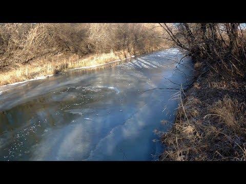 На высыхающей луже ничего, зато на речке очень много рыбы под прозрачным льдом! На живца #11
